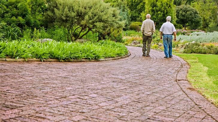 old friends walking on a path talking