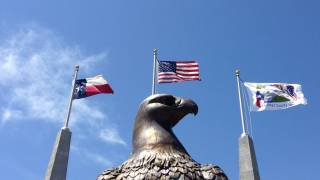 eagle with the texas, us and vet flags