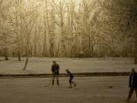 winter scene on a frozen pond